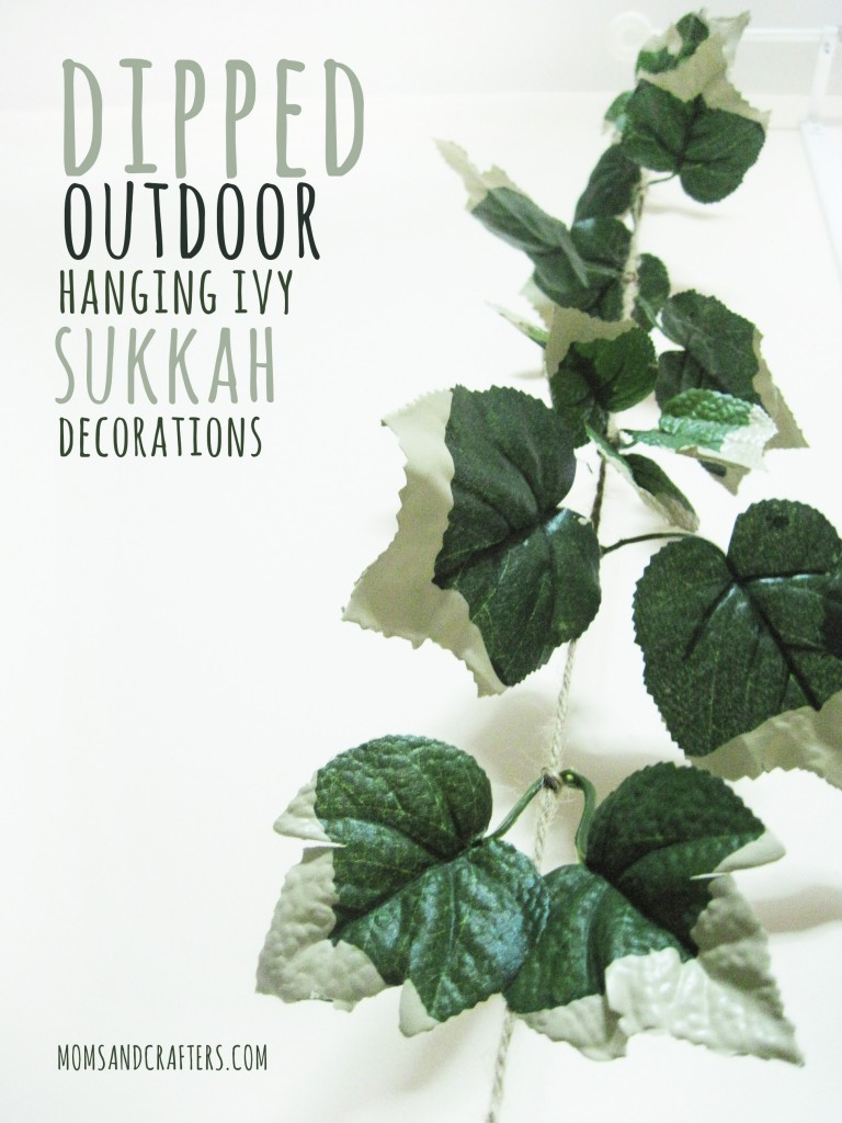 outdoor hanging ivy