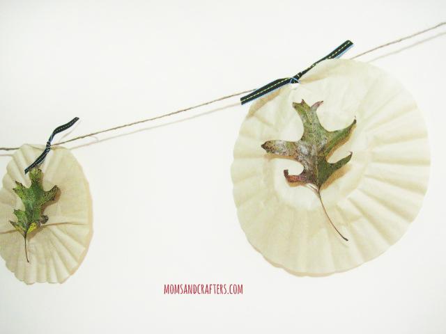 leaf pennant2