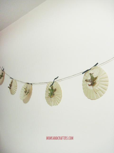 leaf pennant3