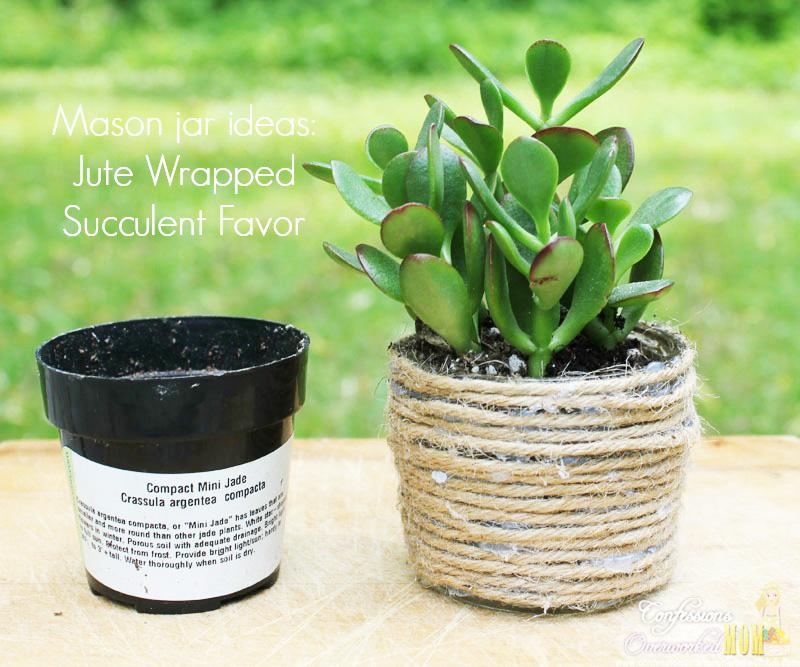 mason-jar-craft-ideas-jute-wrapped-succulent-favor