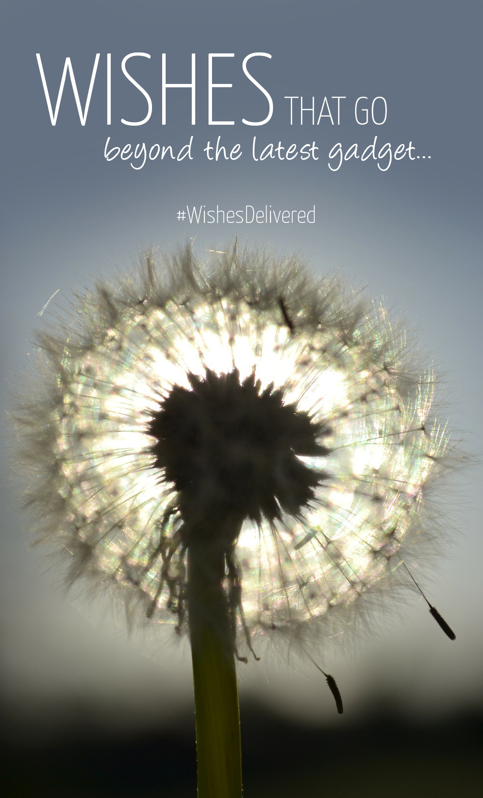 Join the Wishes Delivered campaign by sharing your wish! Click for more details (sponsored for a good cause)