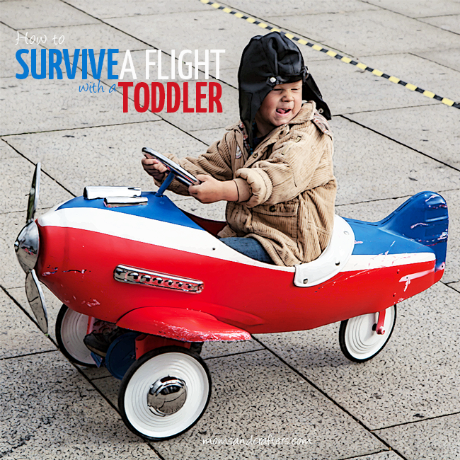 Check out these 9 tips on how to survive a flight with a toddler! They are super practical, a little humorous, and will really help you out!