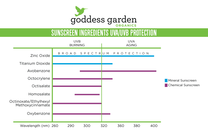 Goddess Garden sunscreen ingredients infographic