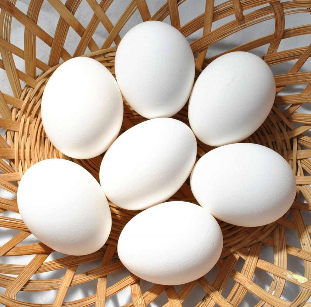 eggs-570540_1280