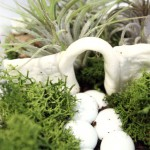 How to make an easy indoor fairy garden terrarium