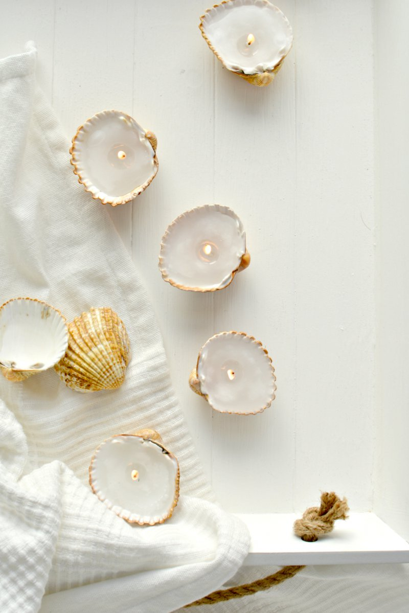 18 Of The Best Seashell Crafts Moms And Crafters