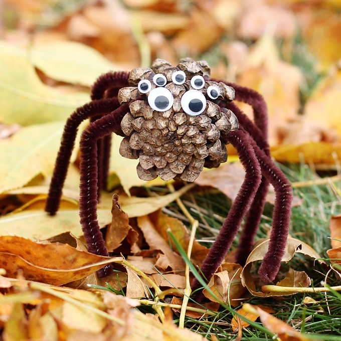 pinecone-spiders2