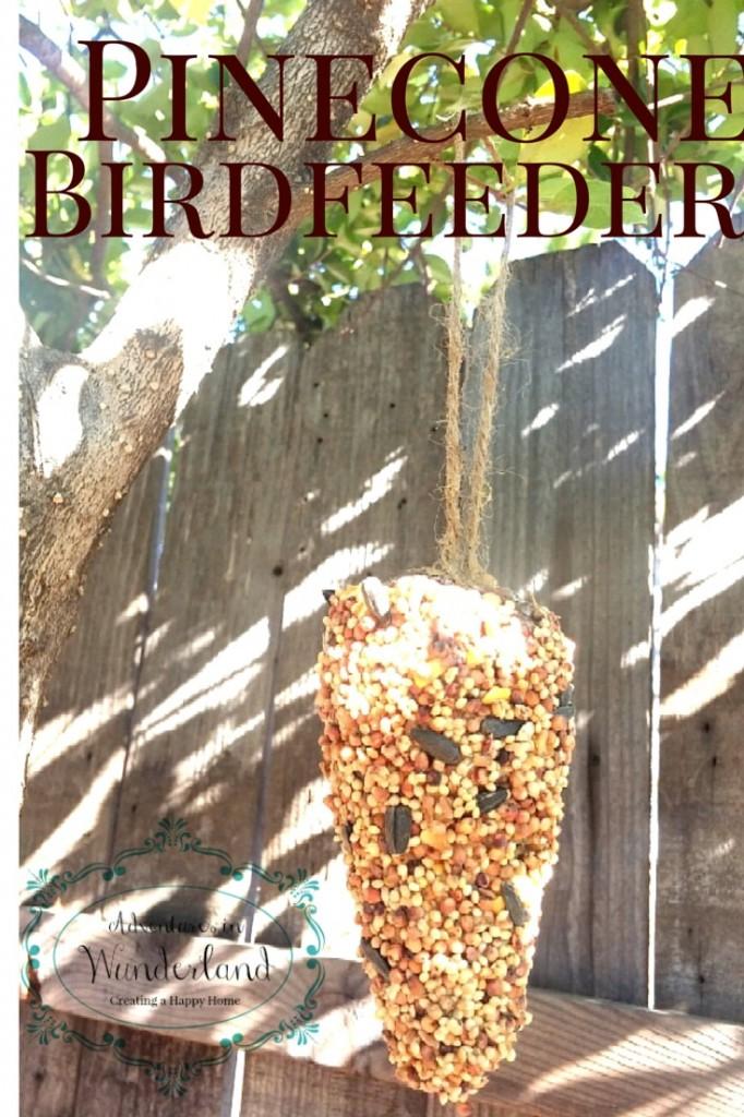 birdfeederfeature-682x1024