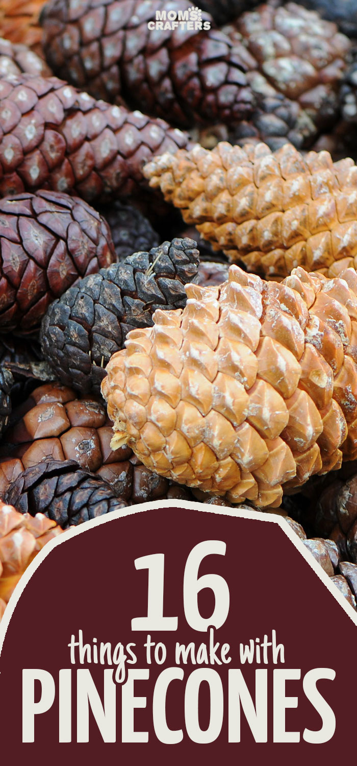 Pinecone Crafts 16 Easy Crafts for All Ages using Pine Cones