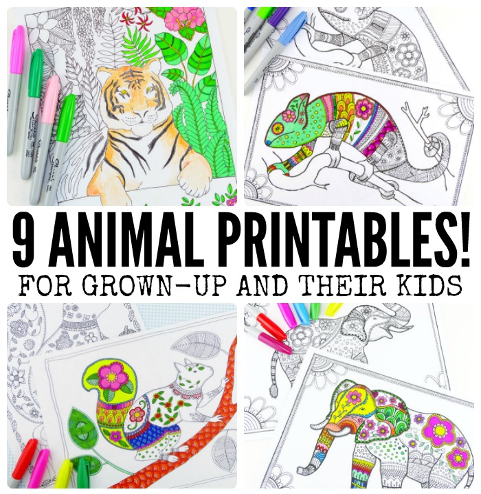Grab Some Animal Printables And Unwind With These Free Coloring Pages For Adults You