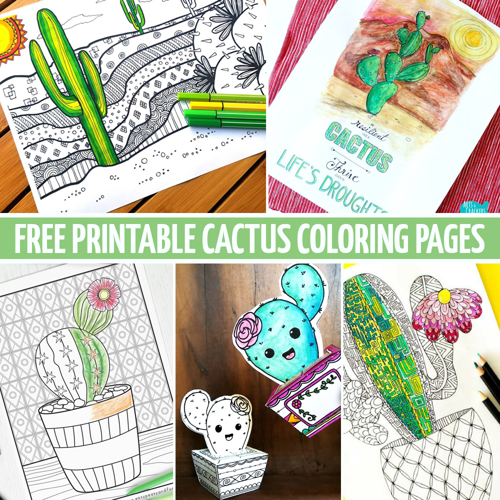 Download these 5 free cactus coloring pages and paper crafts for adults!