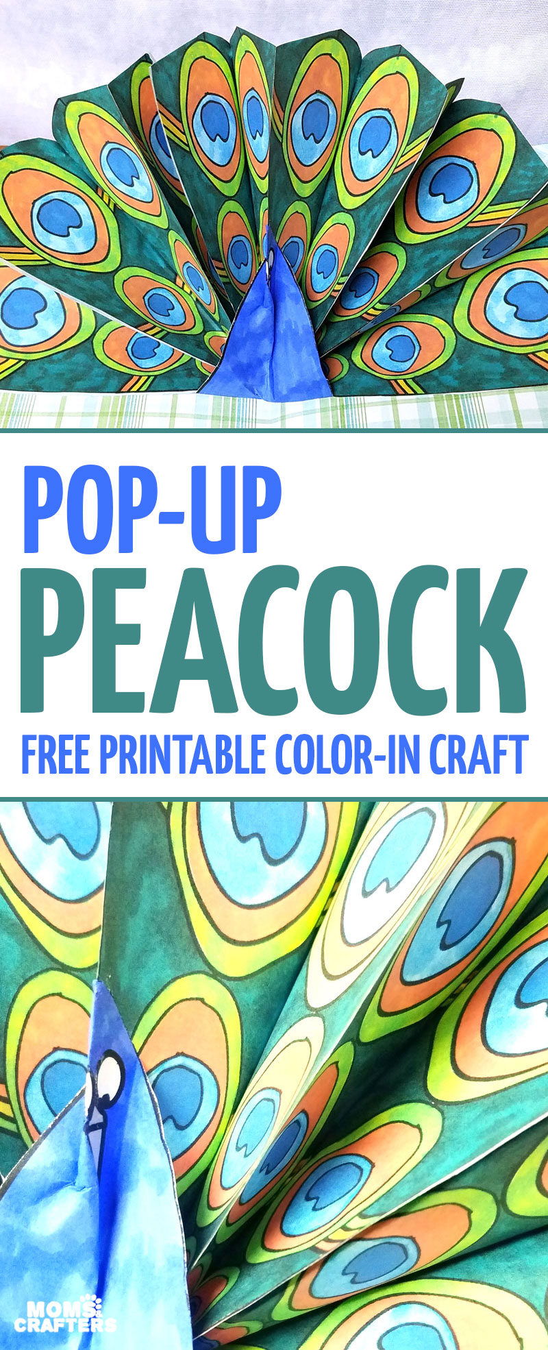 Peacock craft pop up paper peacock with free printable feathers make a pop up peacock craft these free printable color in peacock feathers can jeuxipadfo Choice Image