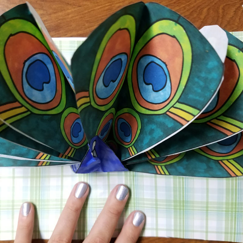 peacock craft pop up paper peacock with free printable