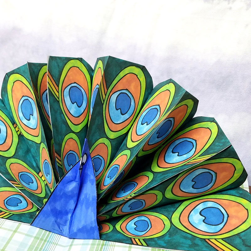 Make a pop up peacock craft! These free printable color-in peacock feathers can be used in any peacock paper craft, but you'll love the pop-up card I made with it. It's a perfect papercraft for kids or adults to create.