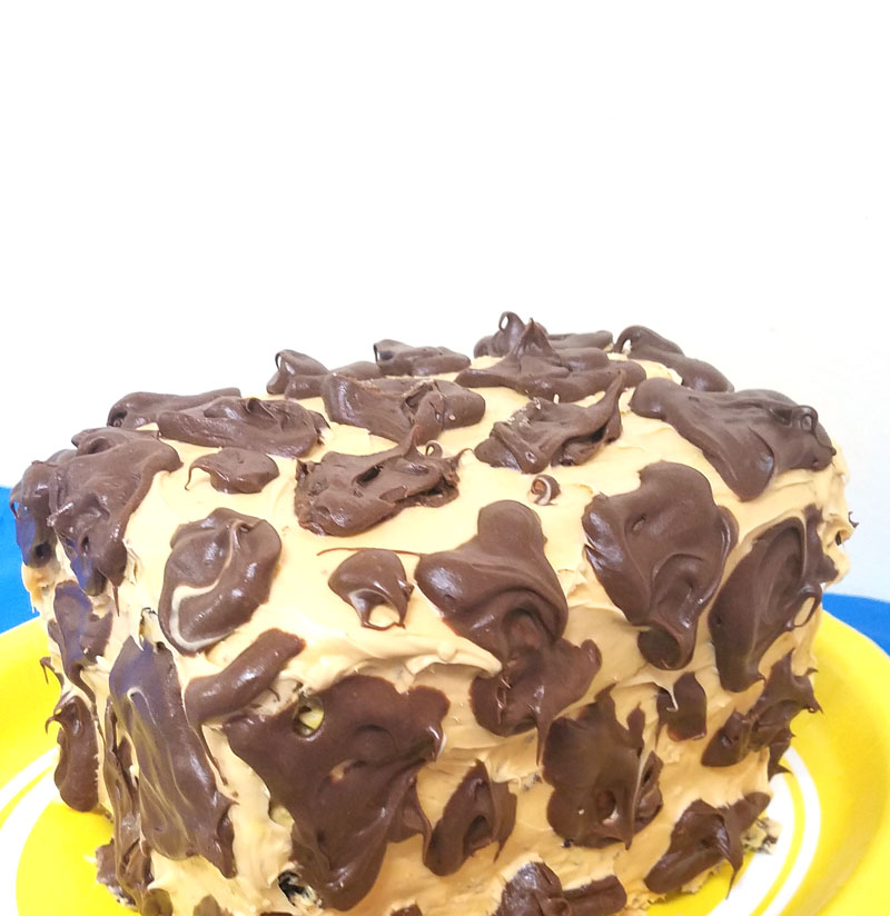 Giraffe Birthday Cake Moms and Crafters