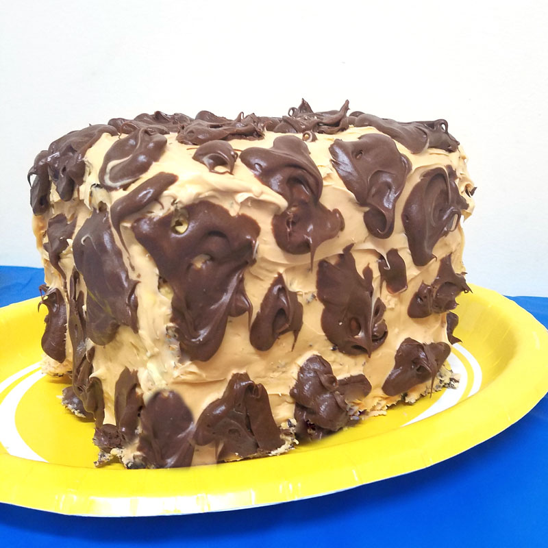 Make this adorable giraffe birthday cake for a birthday party with a giraffe theme or a safari or zoo themed party! This giraffe print cake is super easy for beginners.