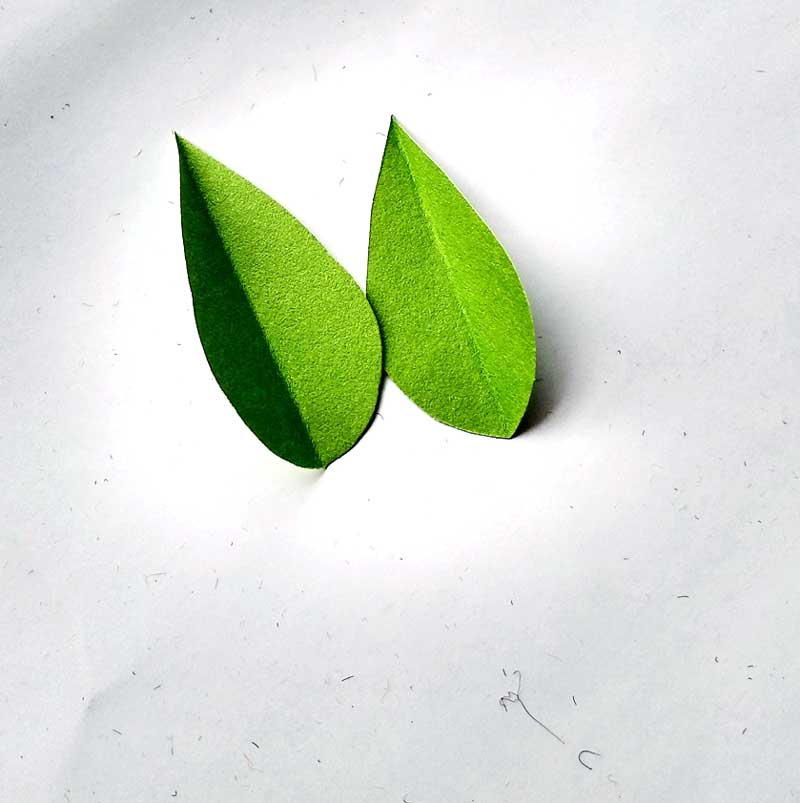 8. Cut out two leaf shapes using green paper and glue them around the stem the same way you glued the petals.