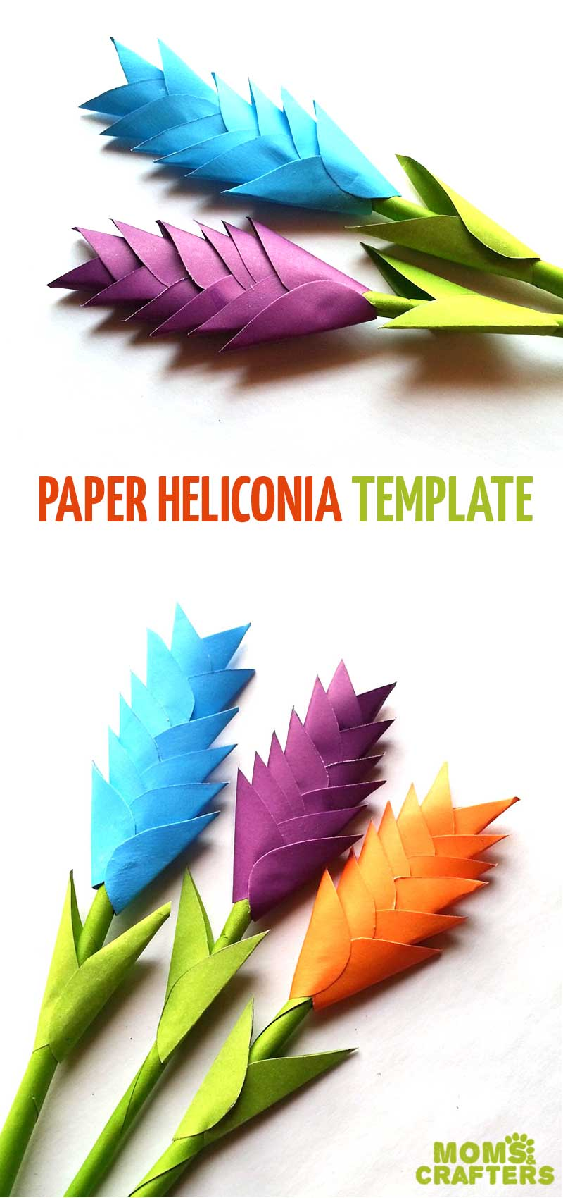 Diy Paper Heliconia Free Printable Paper Flower Templates
