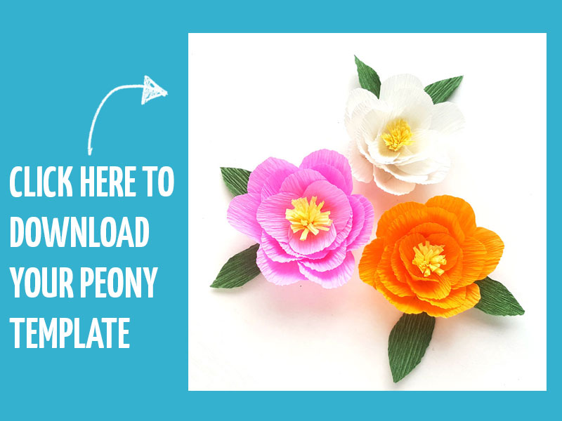 Click here to download our paper peony template!