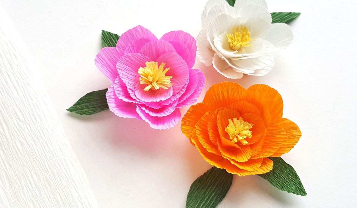 Crepe Paper Peony Template Free Printable Moms And Crafters