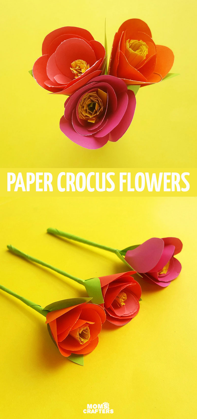 Click for a free template and tutorial for how to make paper crocus flowres! This easy paper flower template for beginners is so pretty and unique.