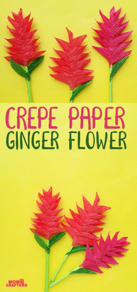 Click to learn how to make a ginger paper flower craft - a fun DIY crepe paper flower that doesn't even need a template.
