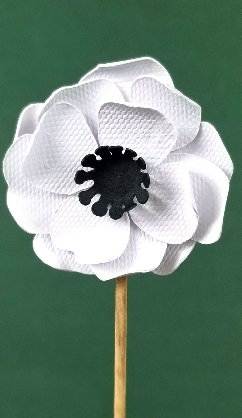 Free SVG for paper flower cupcake topper toothpicks - great for weddings! Cool tutorial for how to make cricut paper flowers for beginners.