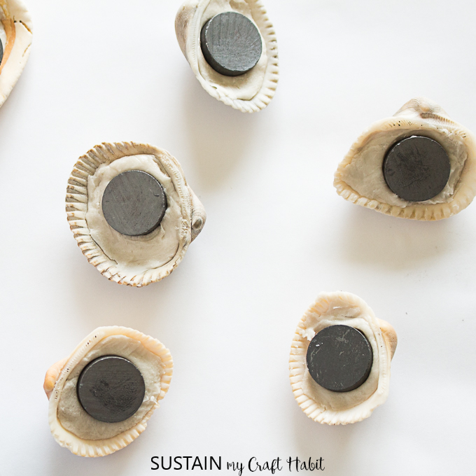 seashell magnets make great things to make with clay